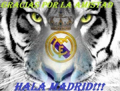 Nacional y Real Madrid Escudos Escudo Real Madrid Tigre