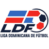 Liga Mayor República Dominicana