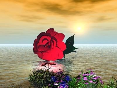 paisajes de amor. paisajes-de-amor-gif-56591
